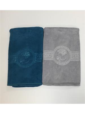 Полотенца кухонные A and C Collection. Цвет: голубой, серый