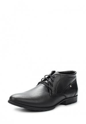 Ботинки классические Nine Lines. Цвет: черный