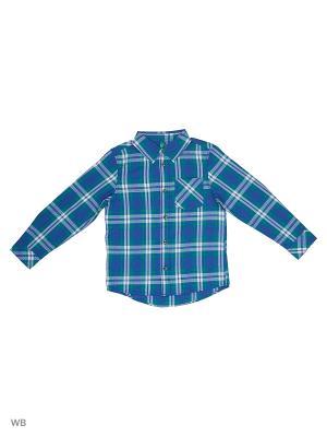 Рубашка United Colors of Benetton. Цвет: зеленый, белый