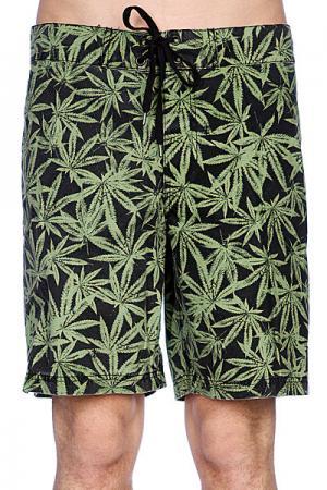 Пляжные мужские шорты  Board Short Green Leaf Fallen. Цвет: черный,зеленый