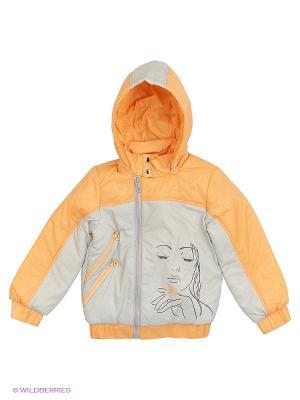 Куртка Элегия Аксарт. Цвет: серый, оранжевый