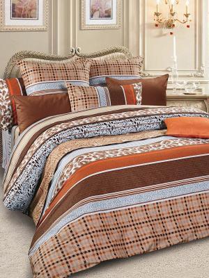 Комплект постельного белья, сатин, дуэт Letto. Цвет: коричневый