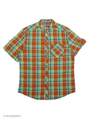 Рубашка с короткими рукавами Modis. Цвет: светло-коричневый, светло-оранжевый, синий, коричневый, серо-зеленый