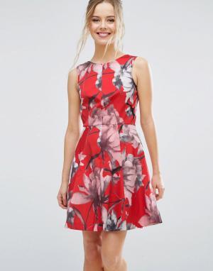 Closet London Короткое приталенное платье с тропическим цветочным принтом Lon. Цвет: мульти
