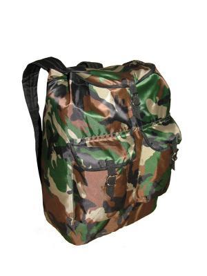 Рюкзак ОРИОН 40Л., OXFORD 240D, ЦВ. КАМУФЛЯЖ (ORI40B) Campland. Цвет: зеленый, коричневый, хаки