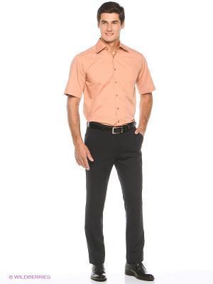 Рубашка Freeman. Цвет: терракотовый