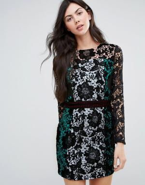 Endless Rose Кружевное платье колор блок с длинными рукавами. Цвет: черный