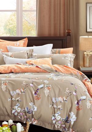 Комплект постельного белья Bellehome. Цвет: коричневый