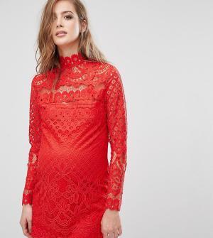 Missguided Maternity Кружевное платье мини для беременных. Цвет: красный