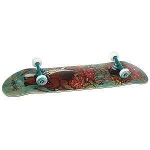 Скейтборд в сборе  Лого Волк Brown/Green/Color Trucks 32 x 8.25 (21 см) Nord. Цвет: коричневый,зеленый