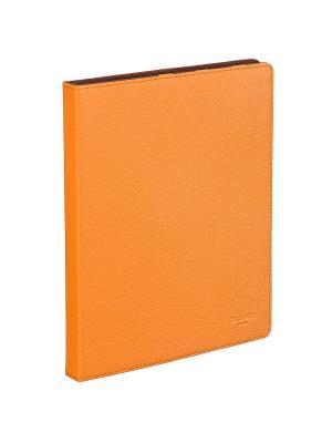 Чехол для iPad4/3/2 Dr. Koffer. Цвет: оранжевый