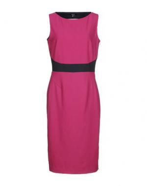Платье до колена RAOUL. Цвет: светло-фиолетовый