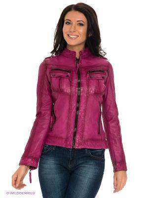 Куртка STEFANO FERRI. Цвет: бордовый
