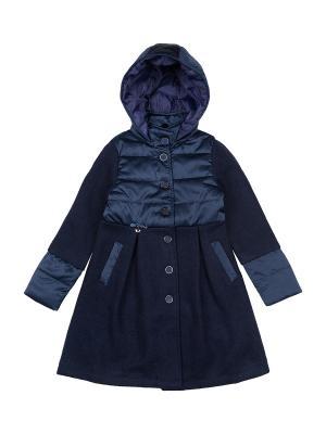 Пальто Born. Цвет: синий