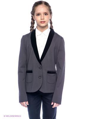 Пиджак Orby. Цвет: серый