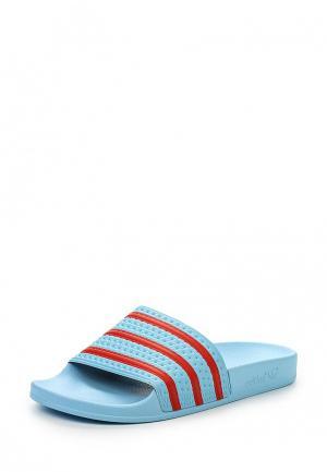 Сланцы adidas Originals. Цвет: голубой