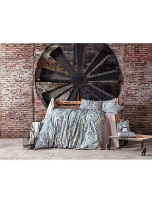 Комплект постельного белья DAMASCUS, ранфорс, 145ТС, 100% хлопок, евро ISSIMO Home. Цвет: серый