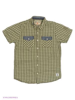 Рубашка GARCIA. Цвет: зеленый