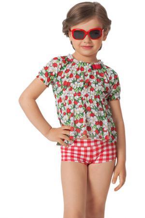 Комплект пляжный: топ, шорты Arina Festivita by Lora Grig. Цвет: мультицвет