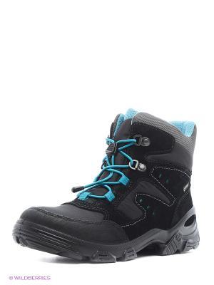 Ботинки ECCO. Цвет: черный, голубой