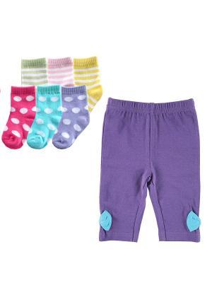 Комплект Лосины, 1 пара, + Носочки, 6 пар Luvable Friends. Цвет: фиолетовый, розовый