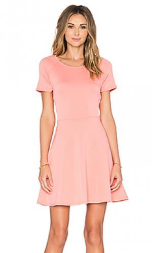 Платье солнцеклёш с коротким рукавом Eight Sixty. Цвет: коралл