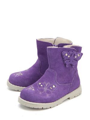Сапоги Антилопа. Цвет: фиолетовый
