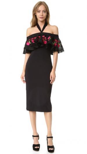 Облегающее платье Lyra Temperley London. Цвет: черный/оранжево-красный