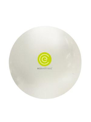 Мяч гимнастический ABS диам 75 см c насосом Ecowellness. Цвет: светло-зеленый