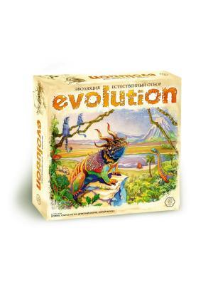 Эволци. Естественный отбор Правильные игры. Цвет: светло-коричневый