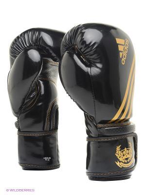 Перчатки боксерские Hybrid Aero Tech Adidas. Цвет: черный, золотистый