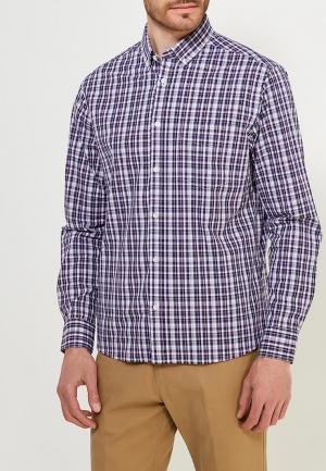 Рубашка Marks & Spencer. Цвет: фиолетовый
