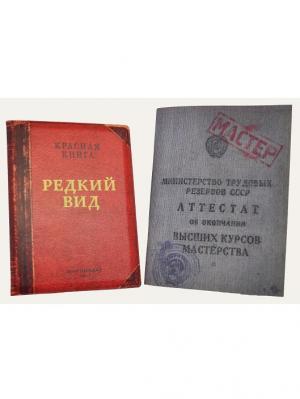 Набор: Обложка на паспорт Редкий вид и Блокнот Аттестат мастерства Бюро находок. Цвет: темно-бежевый, красный