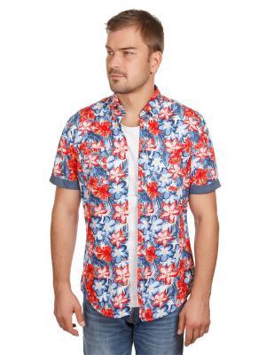Рубашка Flower Print McNeal. Цвет: синий, рыжий