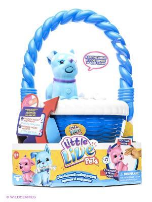 Голубой щенок Little Live Pets в корзинке Moose. Цвет: голубой