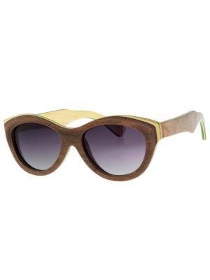 Очки TM0042-G-15-SK SKATEBOARD TEHMODA. Цвет: коричневый