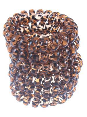Резинки - спиральки для волос 5 см,  силиконовые, леопардовые, 6 штук Радужки. Цвет: коричневый