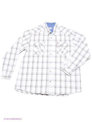 Рубашка Westrenger. Цвет: белый, коричневый