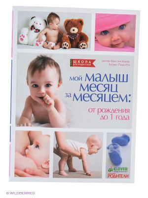ШДР. Мой малыш месяц за месяцем: от рождения до 1 года (м.о) Издательство CLEVER. Цвет: белый