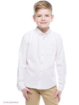 Рубашка ACOOLA. Цвет: бледно-розовый