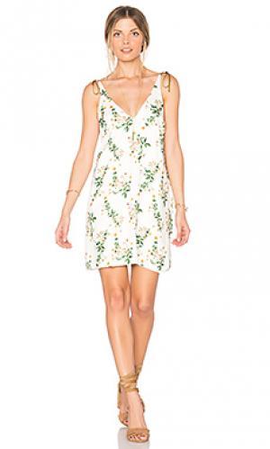 Платье janus SAM&LAVI. Цвет: белый