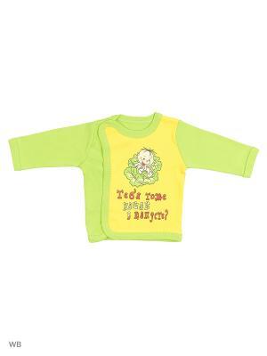 Кофта для новорожденных Bonito kids. Цвет: салатовый, желтый