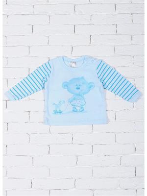 Кофточки ZEBRA KIDS. Цвет: голубой