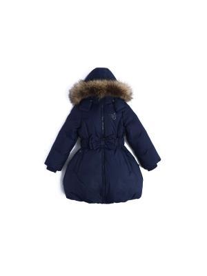 Пальто пуховое NELS. Цвет: темно-синий