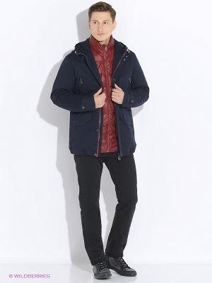 Куртка VIVACANA. Цвет: темно-синий