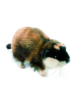 Норвежский лемминг Hansa. Цвет: серый, светло-коричневый