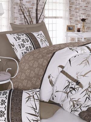 Комплект постельного белья евроБамбук коричневый Тет-а-Тет. Цвет: коричневый