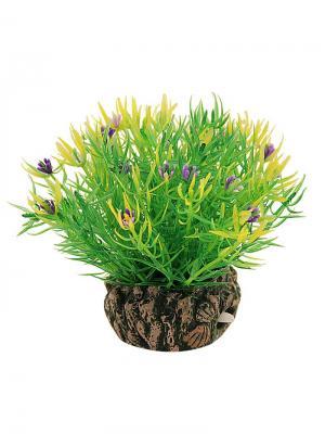 Растение для аквариума с распылителем 12см. LAGUNA. Цвет: желтый, зеленый