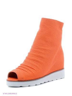 Полусапожки Vitacci. Цвет: оранжевый