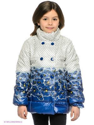 Куртка PELICAN. Цвет: белый, черный, синий